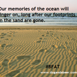Before Your Footprints Fade #BFAT