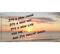 Nina Simone, Michael Bublee, It's a New Dawn