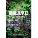 Being Brave #BFAT MESSAGE