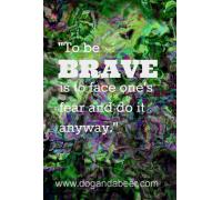 Bravery,brave,#bfat,fears